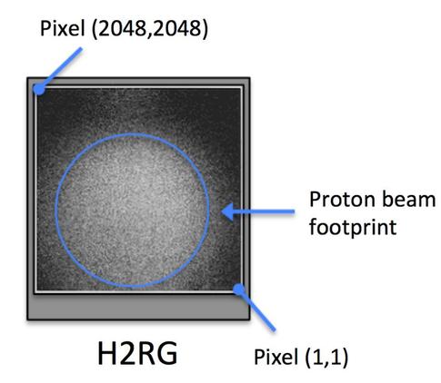 Random telegraph signal (RTS) in the Euclid IR H2RGs