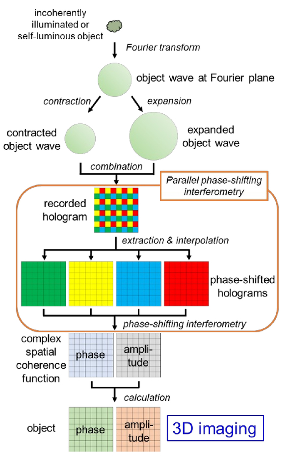 Single-shot incoherent digital holography using parallel phase