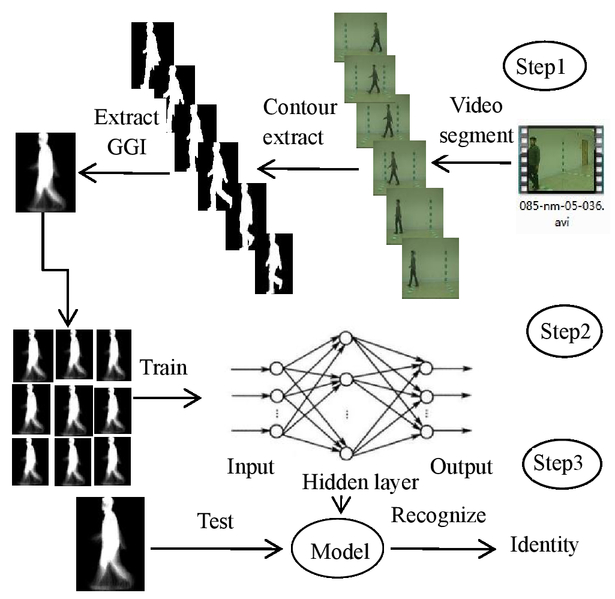 Gait recognition based on optimized neural network
