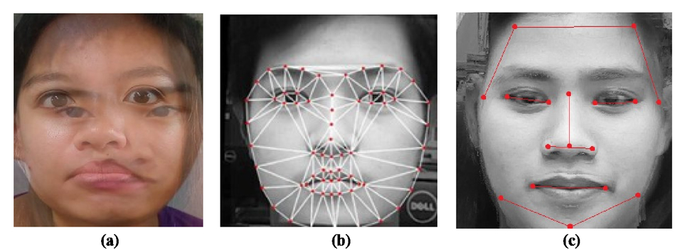 Microcontroller-based face recognition using combinations of
