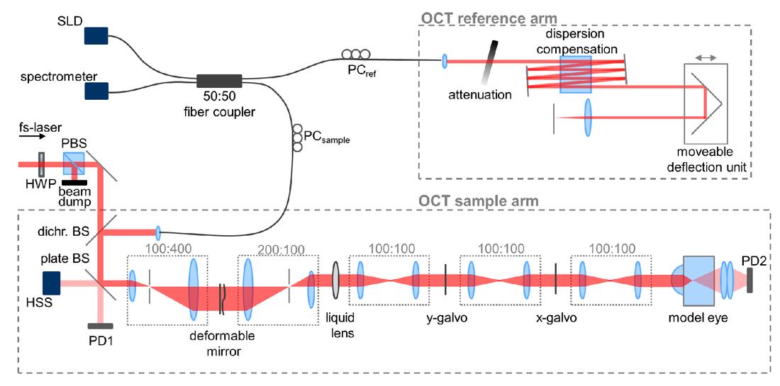 Wavefront sensorless adaptive optics for optical coherence