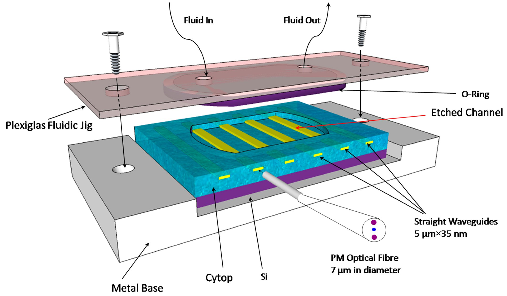 Long-range surface plasmon waveguide biosensors for disease detection