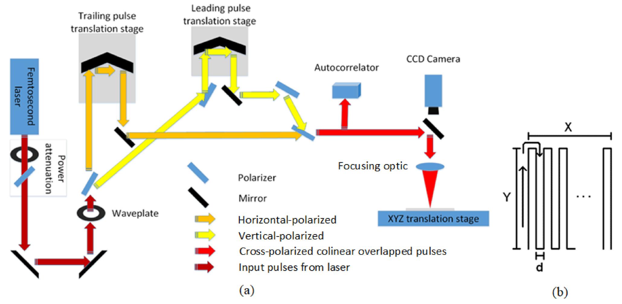 Comparison of self-organized micro/nanostructure formation on copper