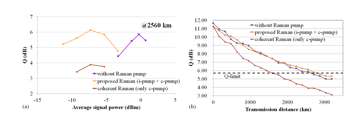 Co-propagating distributed Raman amplifier utilizing incoherent pumping