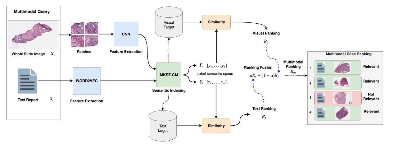 Supervised online matrix factorization for histopathological