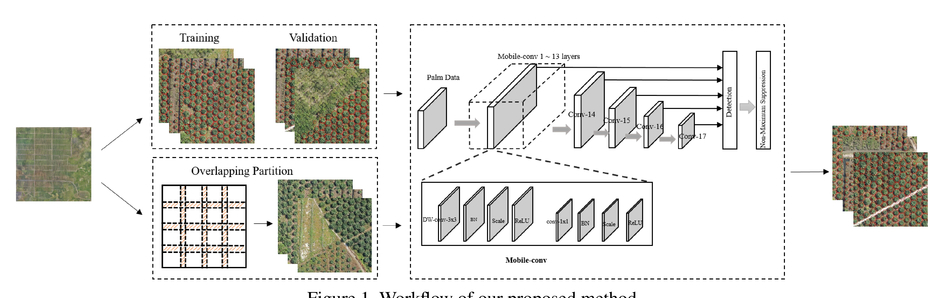 Fast and robust detection of oil palm trees using high-resolution