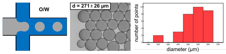 Micro 100 6 Round Blank SR-001-6 1 Diameter