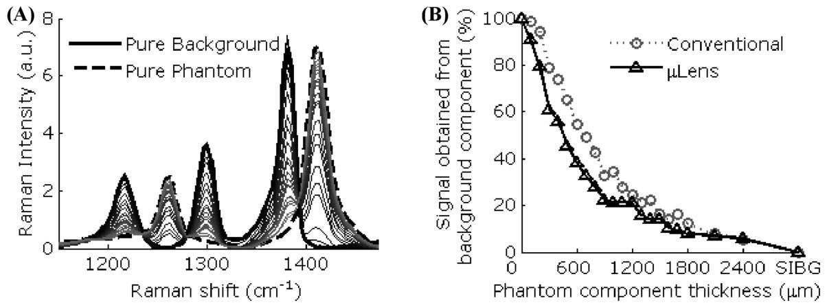 Endoscopy-coupled Raman spectroscopy for in vivo