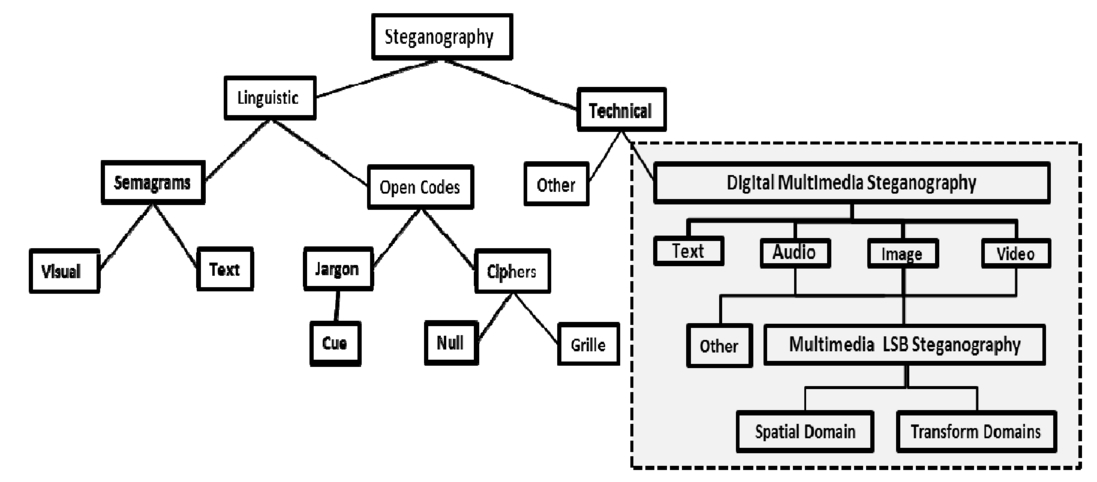 Taxonomy for spatial domain LSB steganography techniques