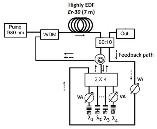 Multi Wavelength Erbium Fiber Ring Laser With Optical Feedback For