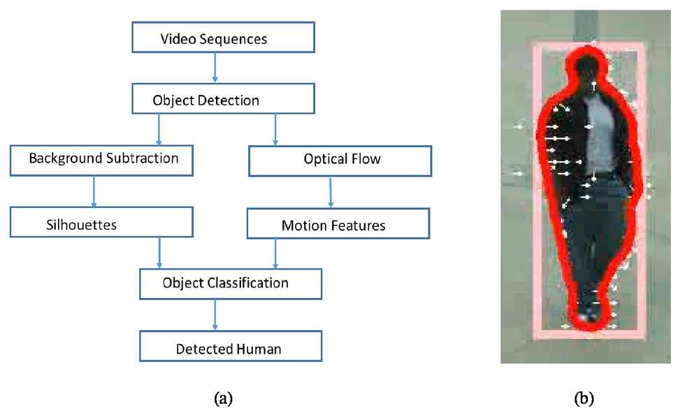 Fusion of optical flow based motion pattern analysis and