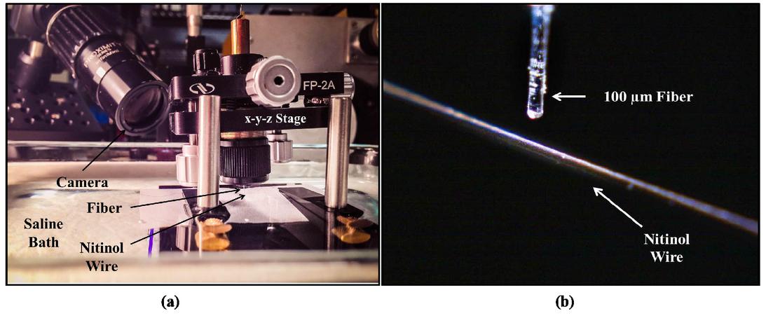 Thulium fiber laser damage to Nitinol stone baskets