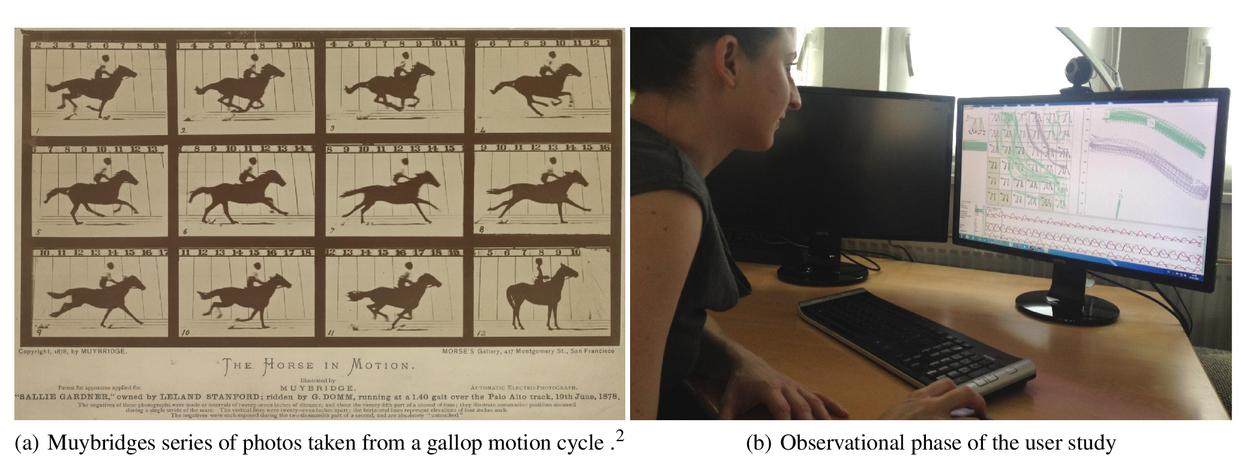 FuryExplorer: visual-interactive exploration of horse motion