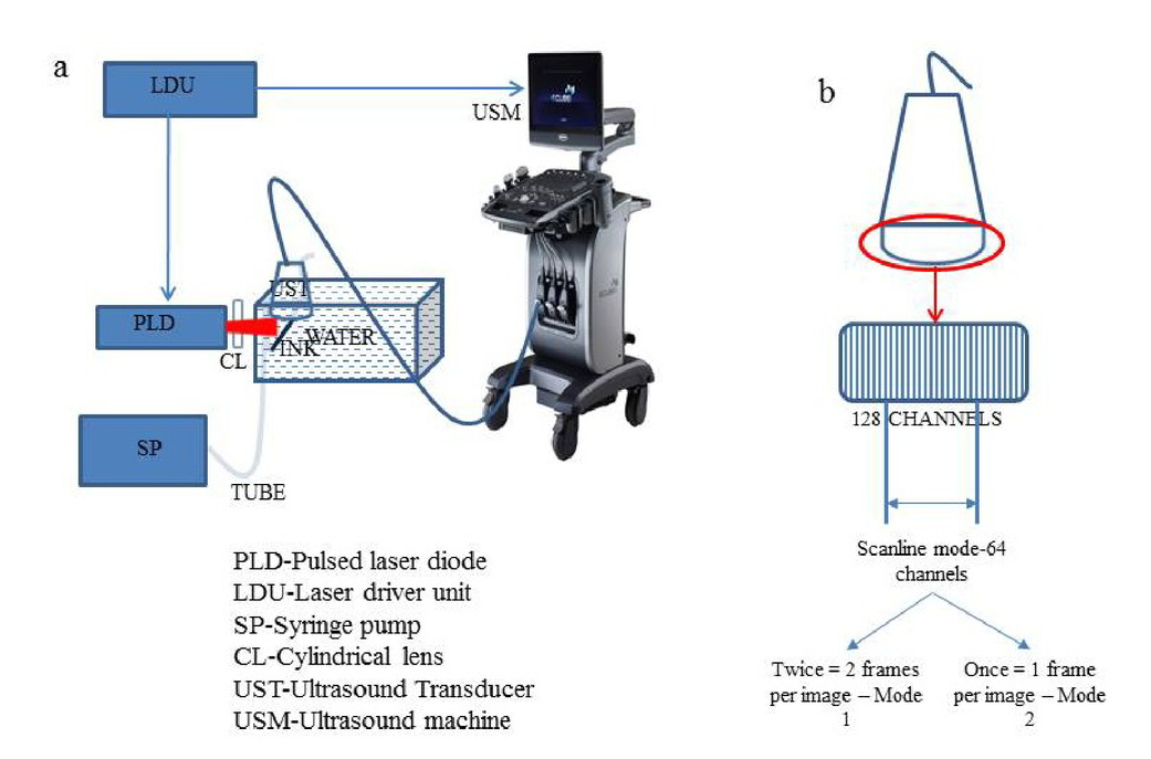High Frame Rate Photoacoustic Imaging Using Clinical Ultrasound System