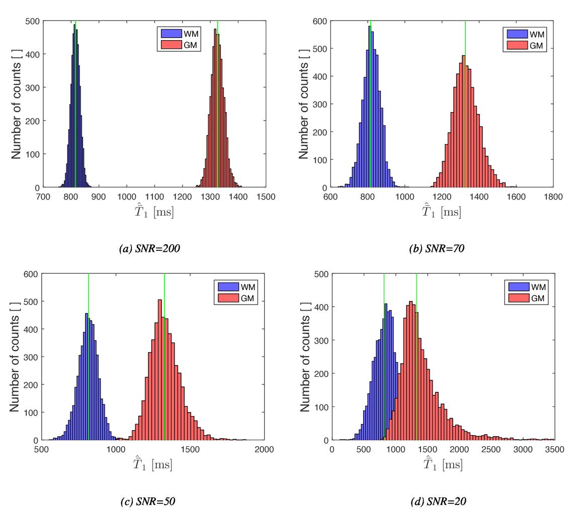 Multi-voxel algorithm for quantitative bi-exponential MRI T1