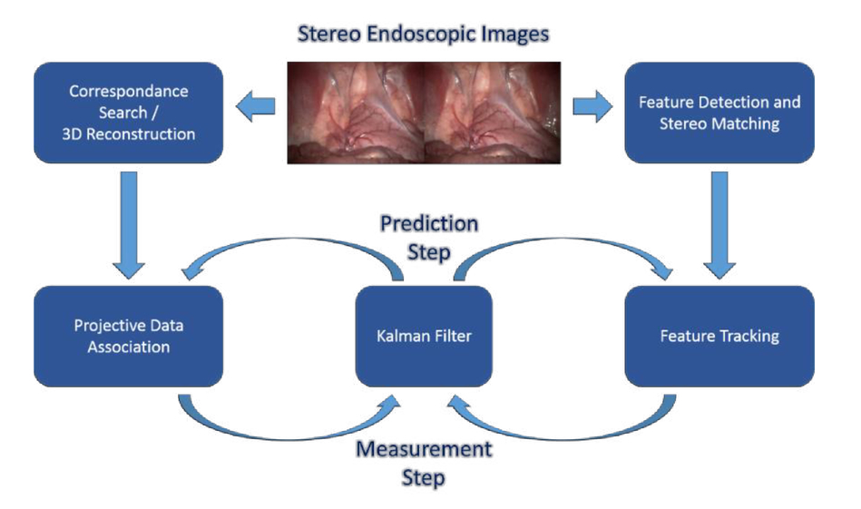 Robust endoscopic pose estimation for intraoperative organ-mosaicking