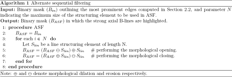 Novel automatic detection of pleura and B-lines (comet-tail