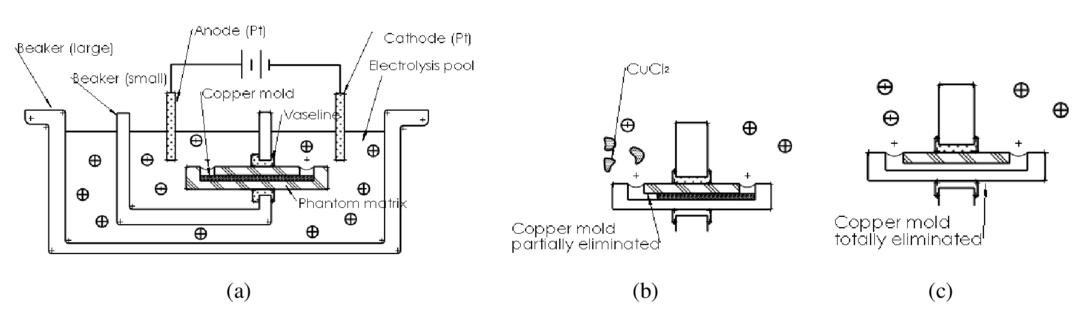 A novel microfluidic model to mimic the turbid nature and