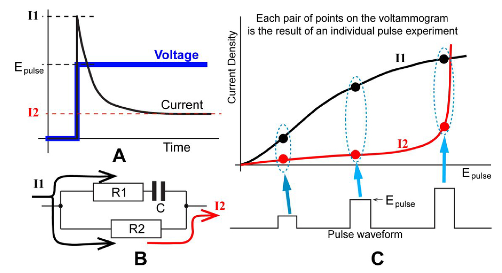 Some Electrochemical Aspects Of Aqueous Ionic Polymer Composite