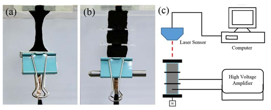 Dielectric elastomer actuators for facial expression