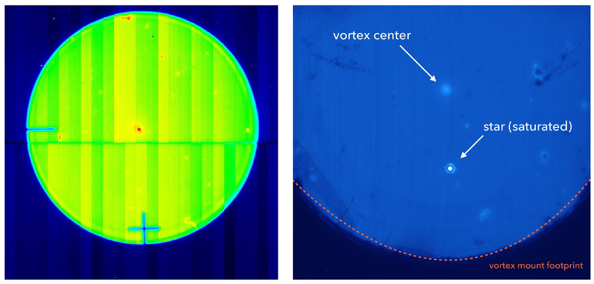 Three years of harvest with the vector vortex coronagraph in