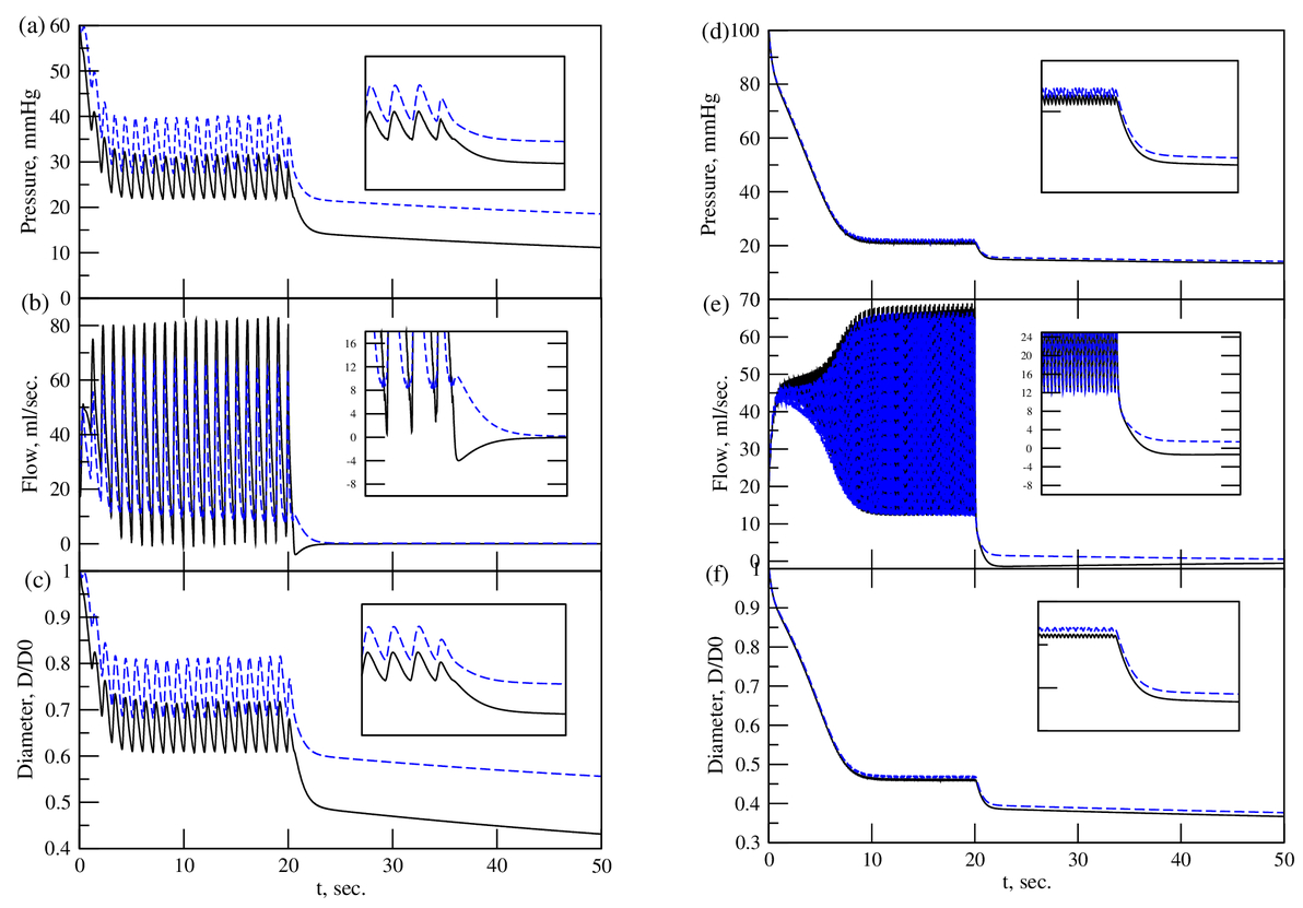 Modeling study of terminal transients of blood flow