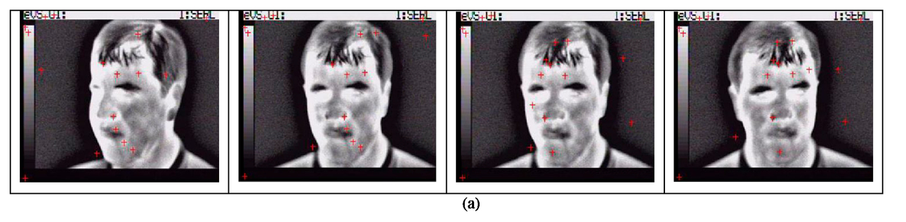 A face recognition algorithm based on thermal and visible data