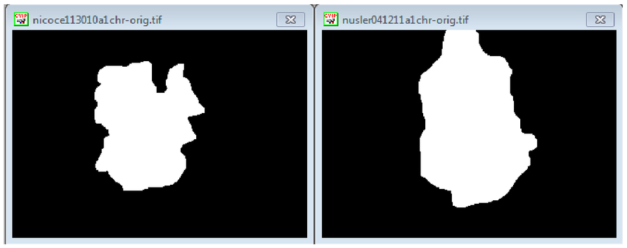 Image processing and pattern recognition with CVIPtools
